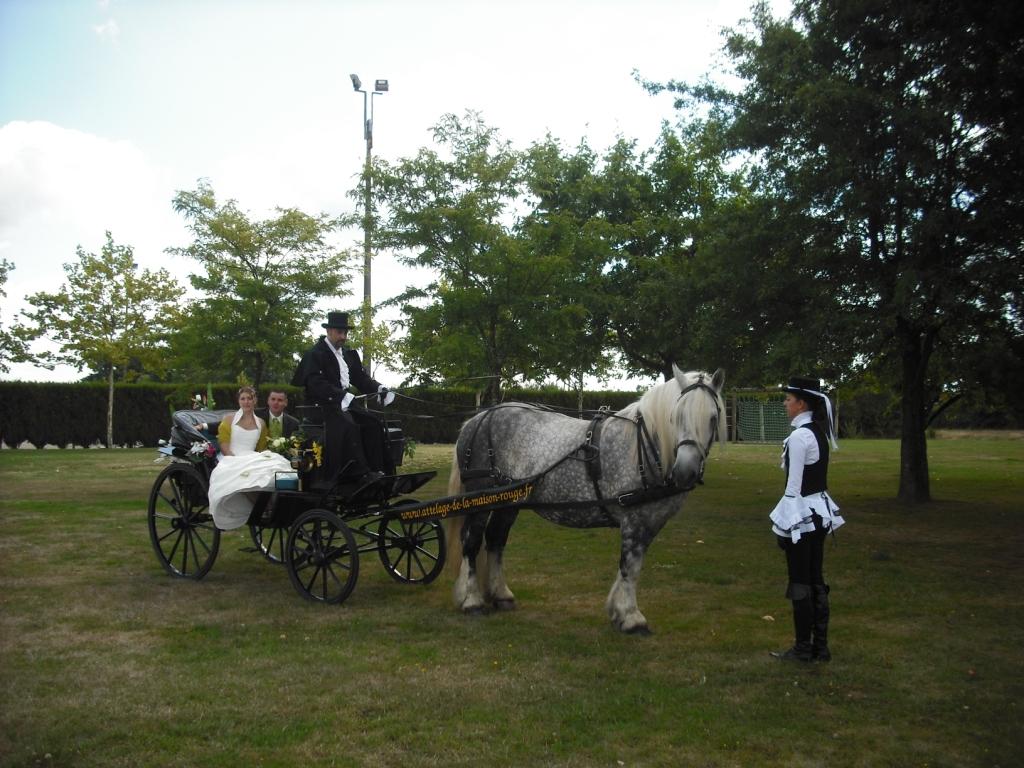 nebuleux-caleche-costumes-mariage