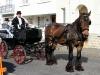 attente-napoleon-wagonnette-costume