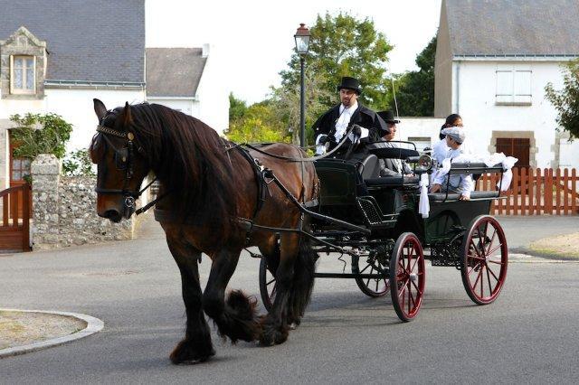 wagonnette-napo-costume-mariage